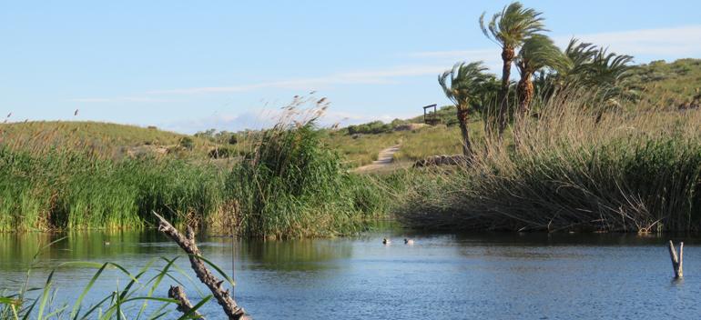 Gestión del agua en el marco de la economía circular