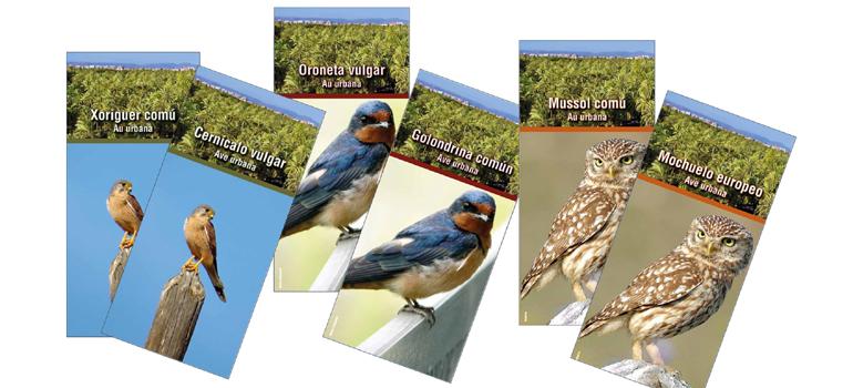 ¿Conoces las aves de Elche?