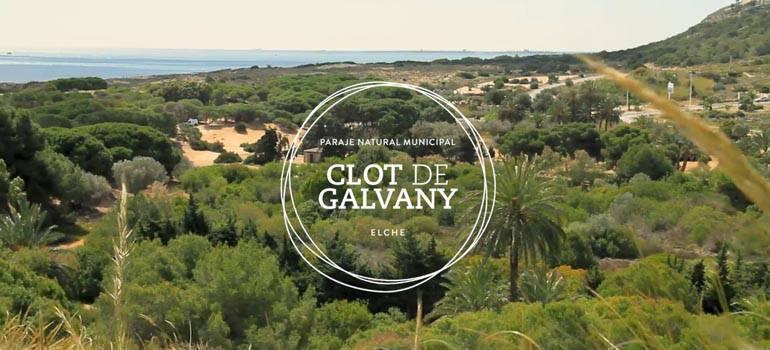 Campaña de revegetación Clot de Galvany