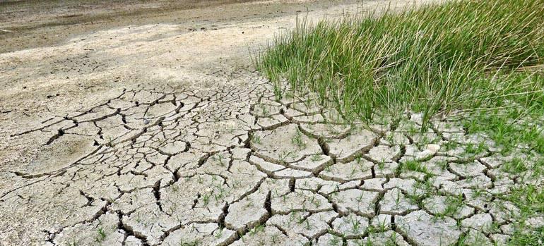 El Govern declara l'emergència climàtica
