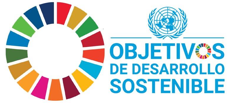Elx defineix polítiques locals que tenen en compte els ODS